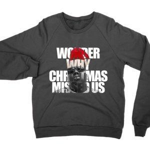 Wonder Why Christmas Missed Us jumper (sweatshirt)